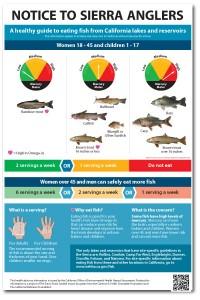 Sierra-fish-advisory-poster_4web